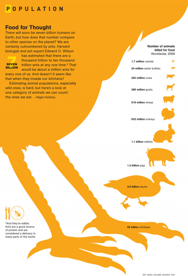 FoodforThought 4e09178d45006 w640 52 Billion Chickens