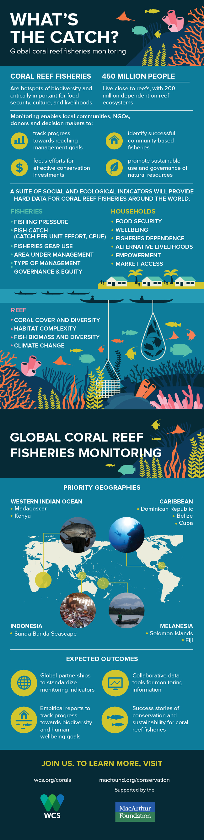 18020 - coral reef_web