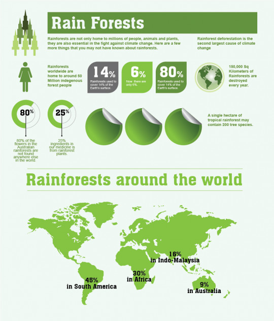 Rainforests: Facts and Figures