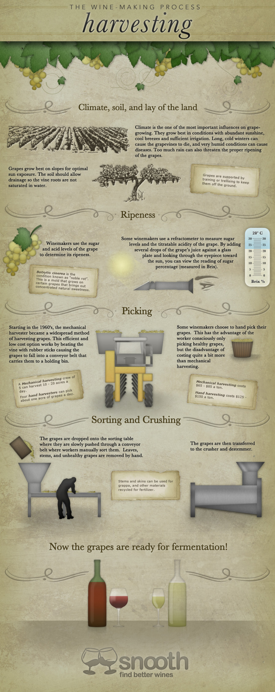 14000? w=900 - Making Wine: A Quick Overview