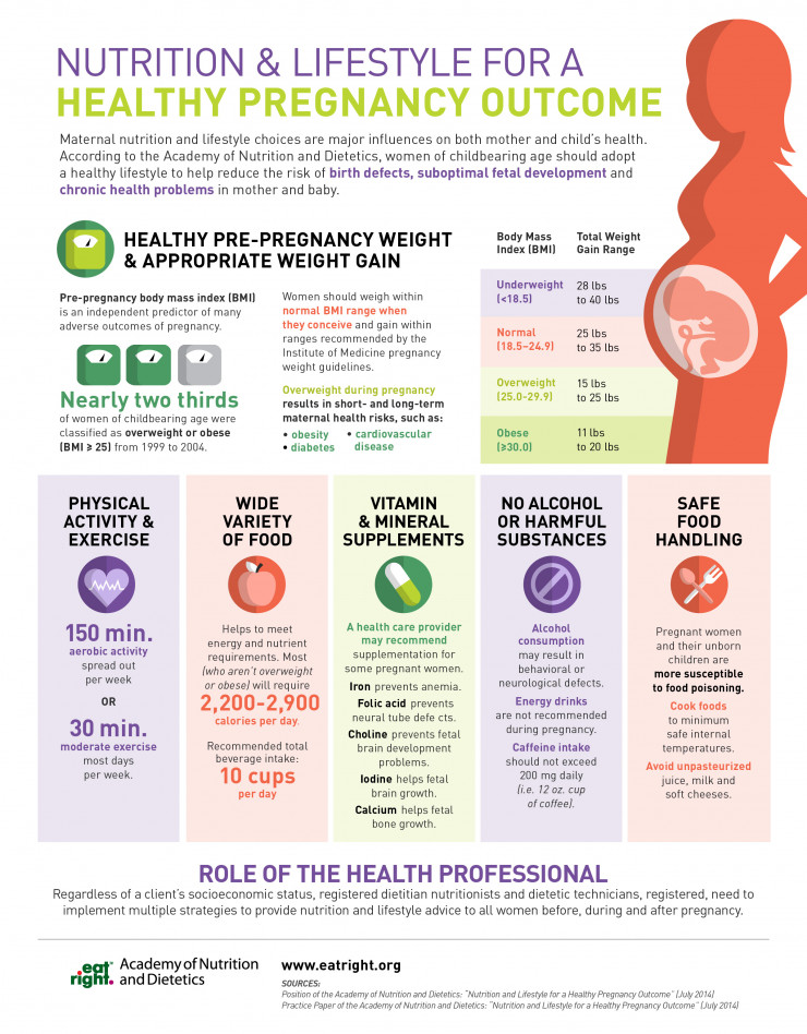 Nutrition & Lifestyle For A Healthy Pregnancy Outcome