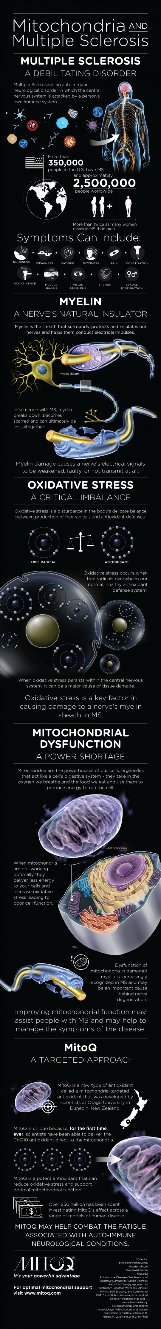 Mitochondria and Multiple Sclerosis