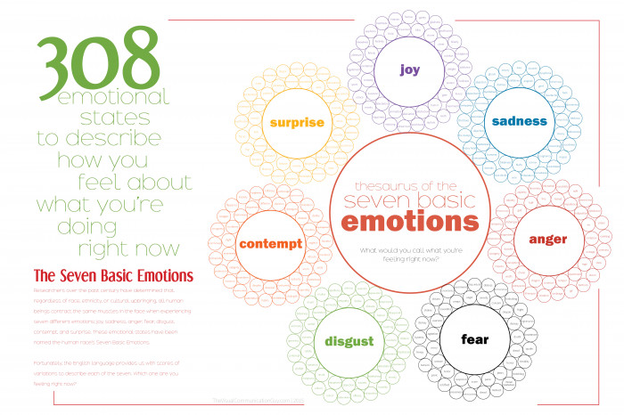 308 Ways to Describe How You Feel: Thesaurus of the Seven Basic Emotions