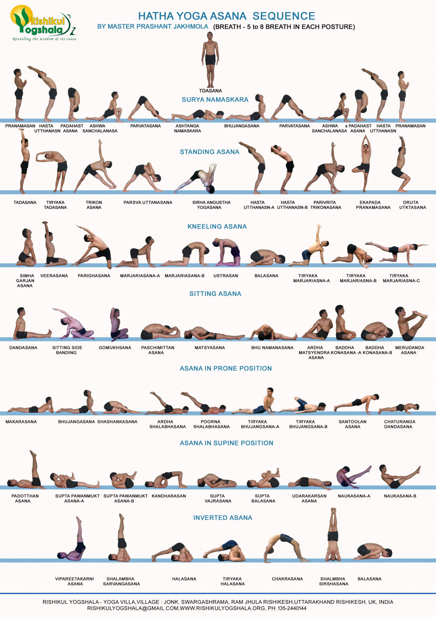 209415? w=900 - Yoga 101 - All About Hatha Yoga