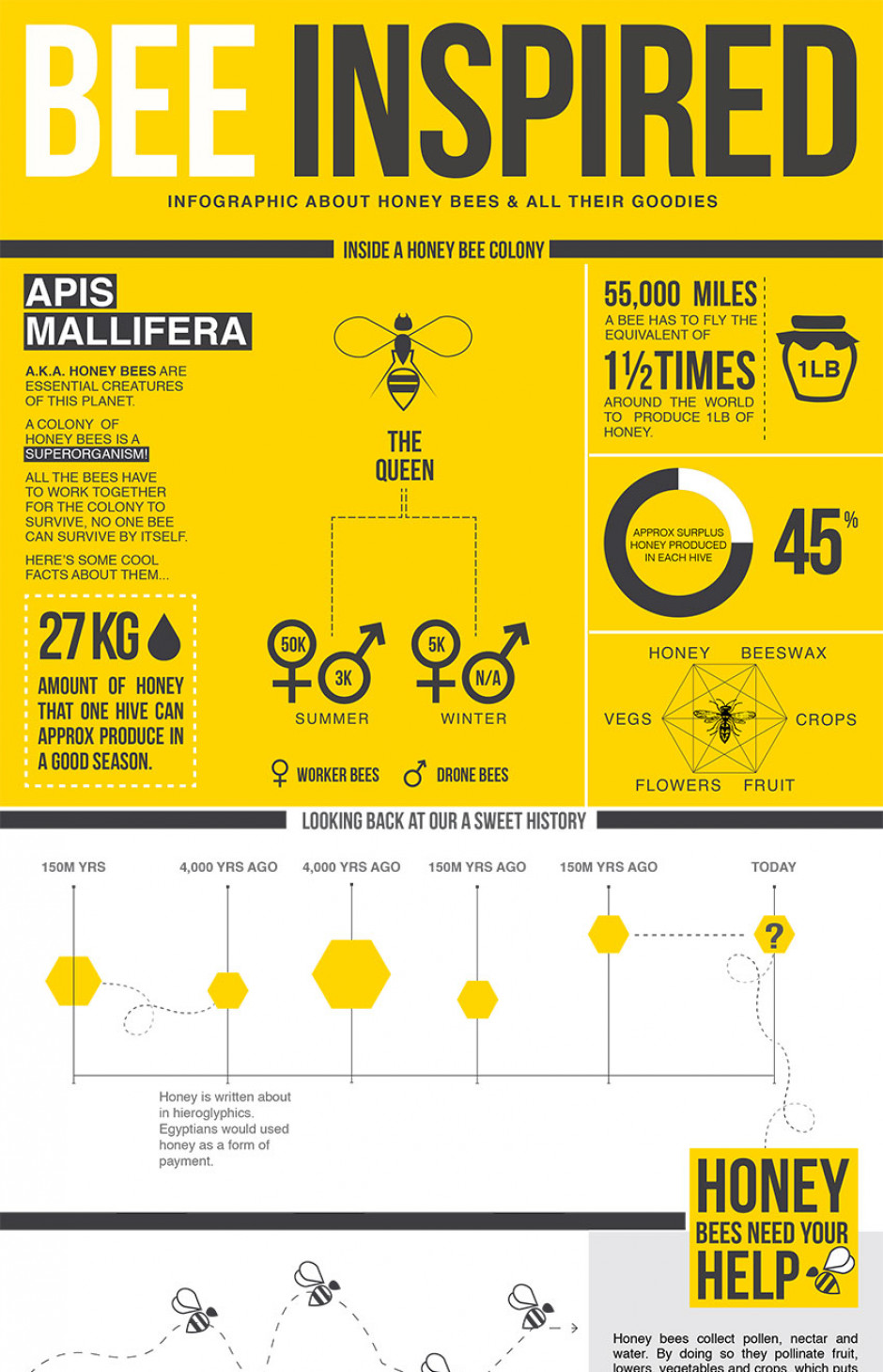 Bee Inspired - Infographic