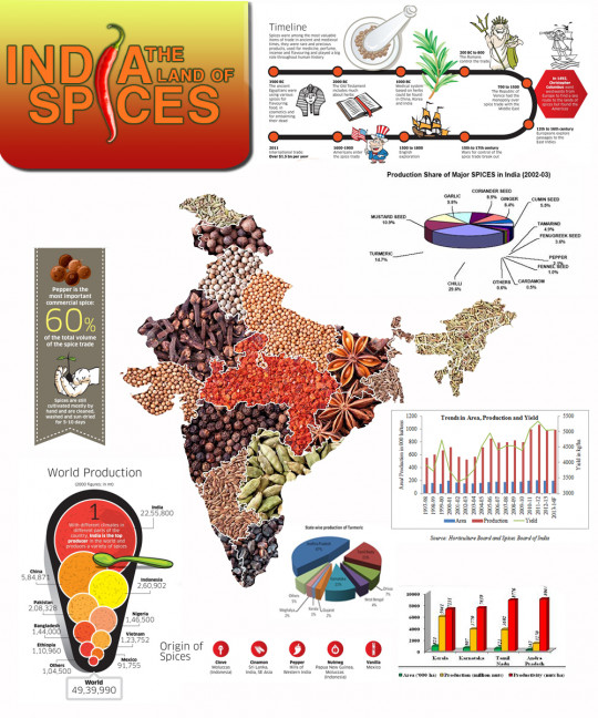 India: The Land of Spices