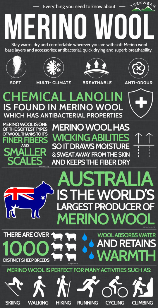 Everything you need to know about Merino Wool.