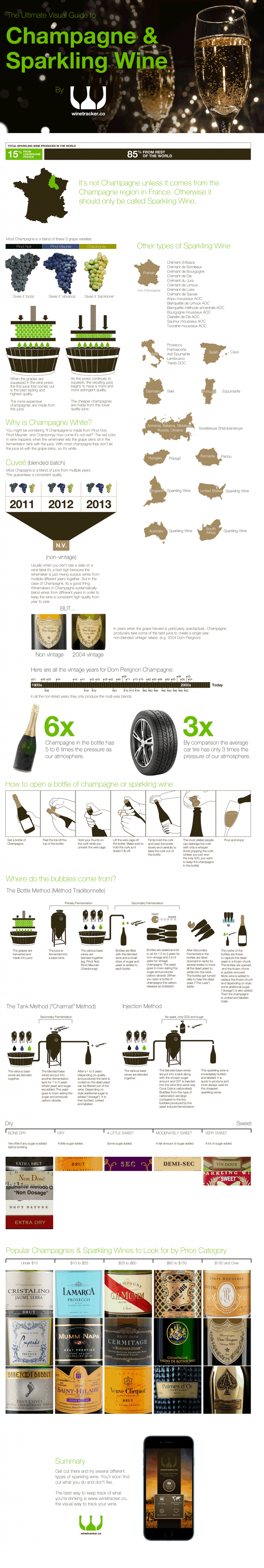 The Ultimate Visual Guide to Champagne and Sparkling Wine