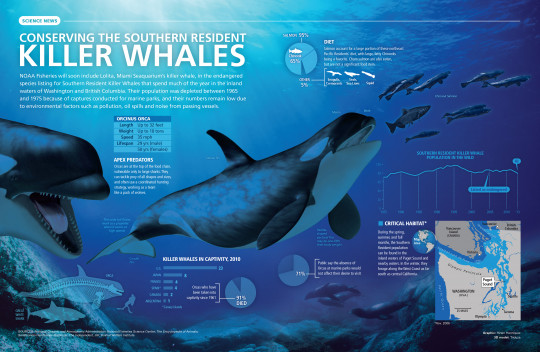 Conserving the Southern Resident Killer Whales