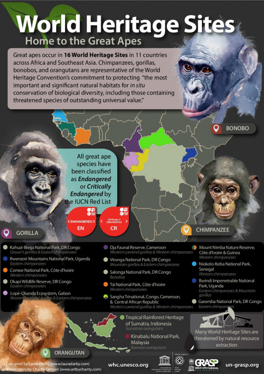 Great Apes in UNESCO World Heritage Sites