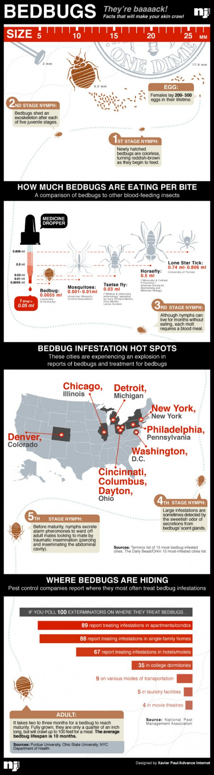 bugs, bed bugs, pest control, vacation, hotel, bedbugs infestation