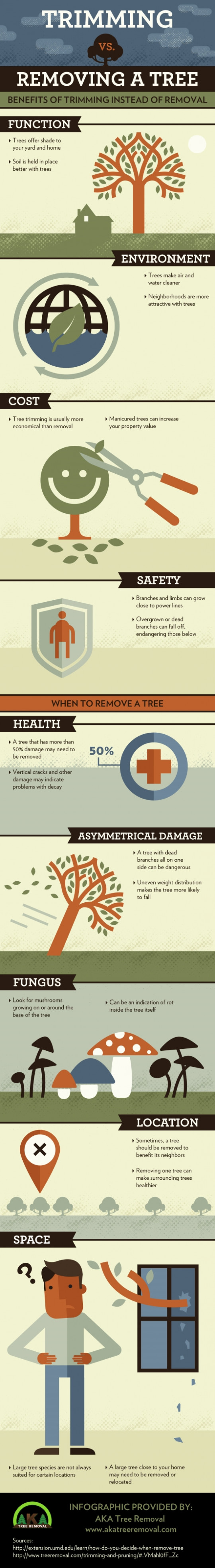 Trimming vs. Removing a Tree