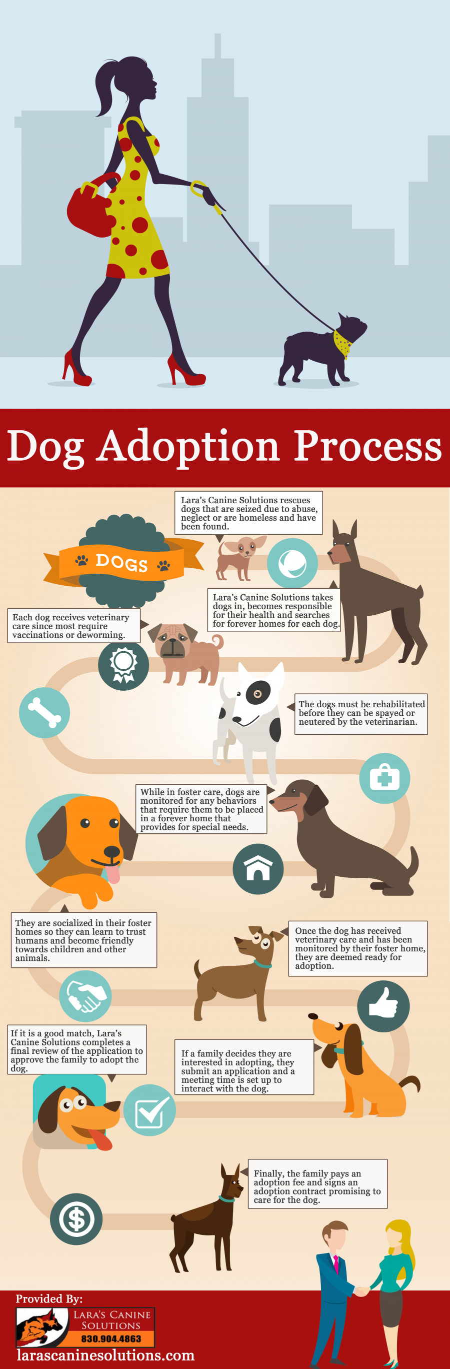 246110? w=900 - Top Reasons to Adopt A Pet