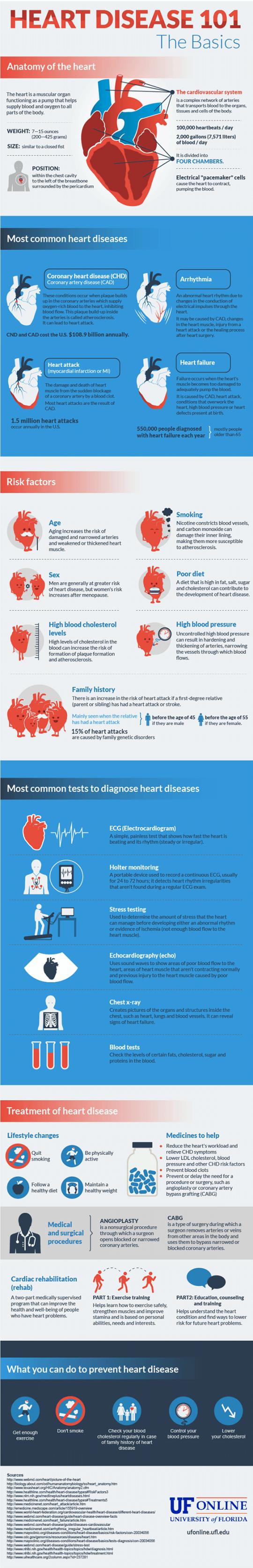 Heart Disease 101: The Basics