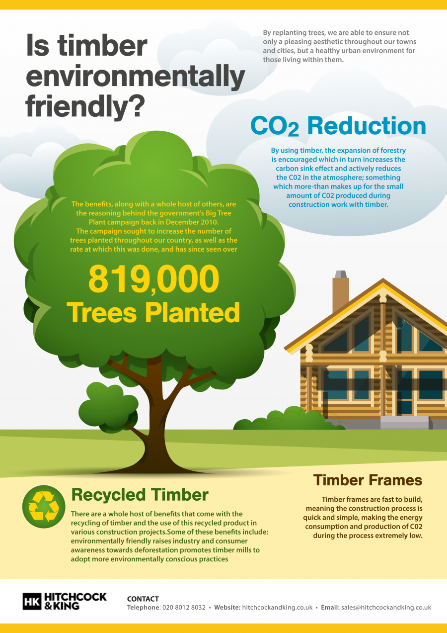 280545? w=900 - From Tree to Timber - How and Why are Trees Processed