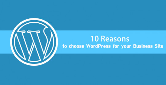 10 Reasons Why You Should Go With WordPress For Your Business Website [Infographic]