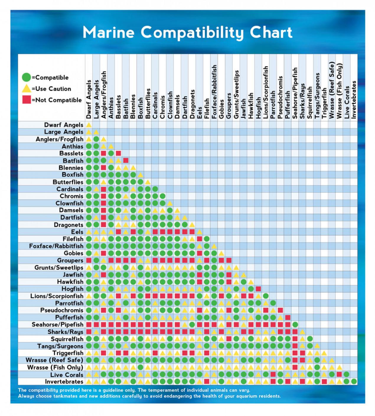 Marine Animal Compatibility Chart