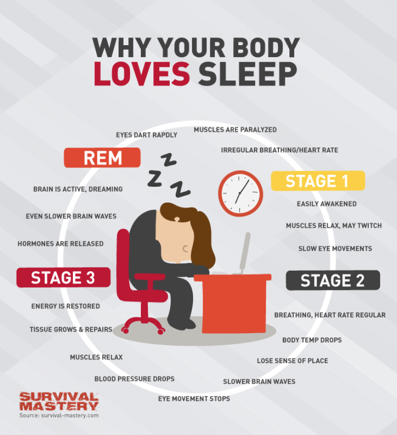 Body Loves Sleep Infographic