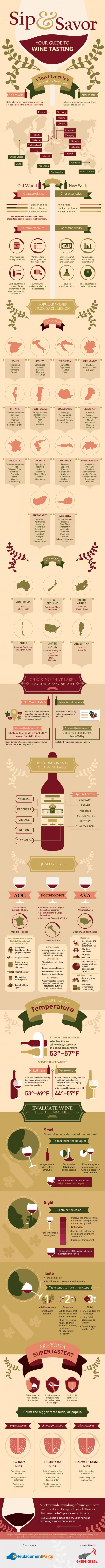 Sip and Savor: Your Guide to Wine Tasting