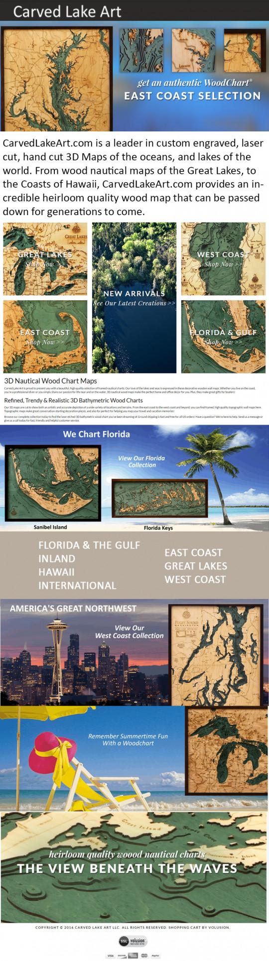 Carvedlakeart Infographics