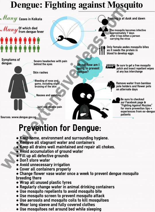Steps To Prevent Dengue