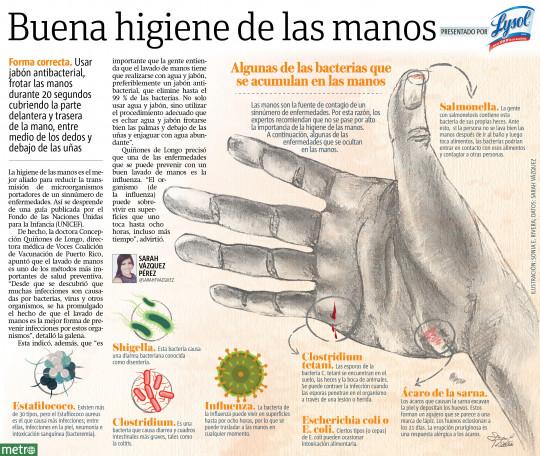Algunas de las bacterias que se acumulan en las manos