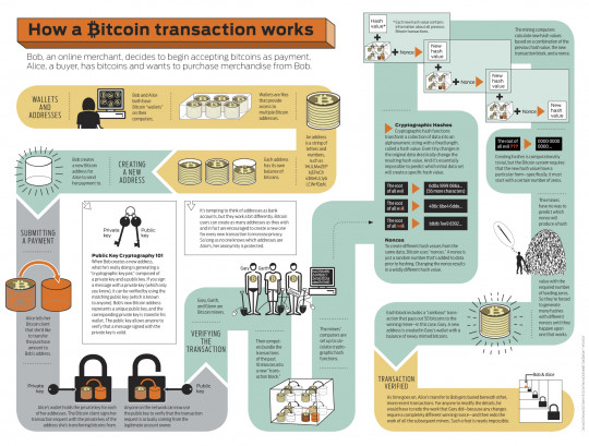 Bitcoin infographic