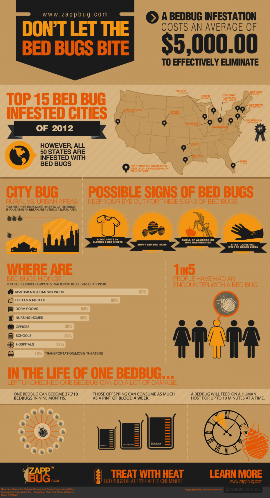 How to Get Rid of Bed Bugs [Infographic] by ZappBug