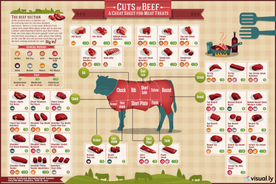 Cuts of Beef
