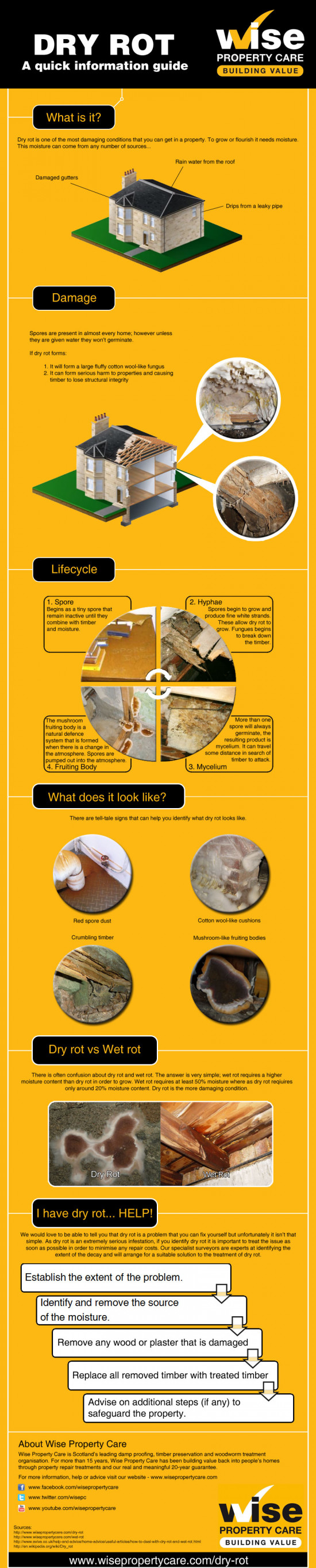 A simple guide to dry rot