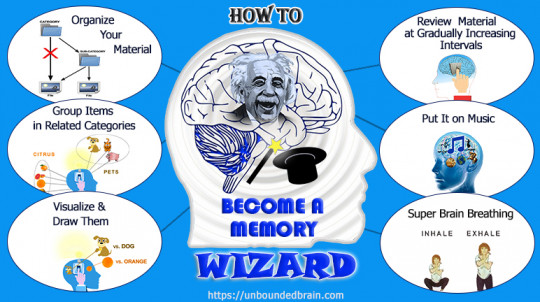 Become a Memory Wizard: Research-Tested Memory Improvement Tips