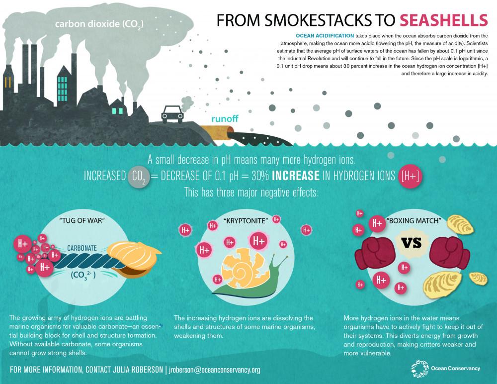From Smokestacks to Seashells, via Ocean Conservancy