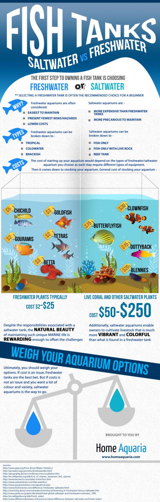 FISH TANKS Saltwater VS Freshwater